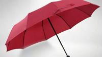 颜值大雨伞为你而来 300积分即可带走它 | 茶馆活动